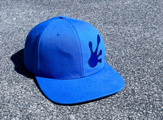 Qualityhats Shop - Screw Them All Logo Hat - Blue